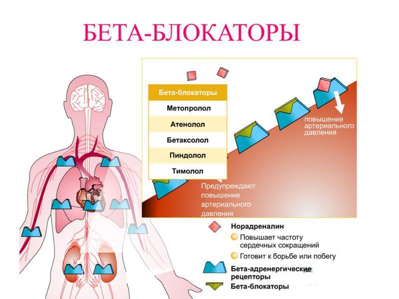 препараты лечения от паразитов