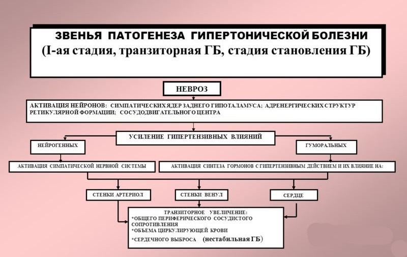 izmeneniya-arteriol-pri-gipertonicheskoy-bolezni