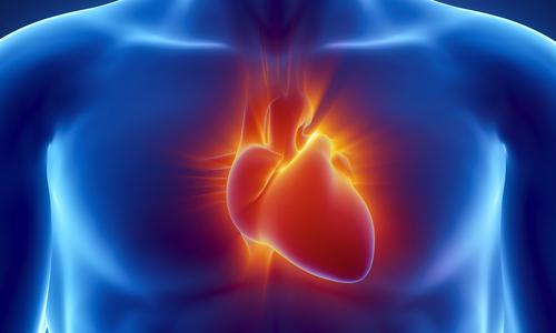 Кардиомегалия сердца