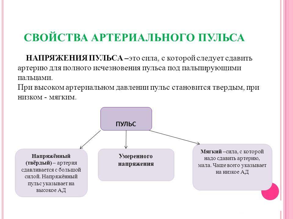 рекомендации диетолога ксении селезневой