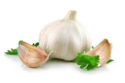 Польза чеснока при стенокардии