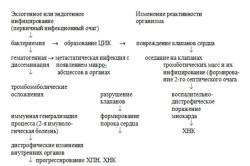 Осложнения течения инфекционного эндокардита