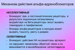 Механизм действия альфа адреноблокаторов