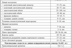 Трехмерная эхокардиография