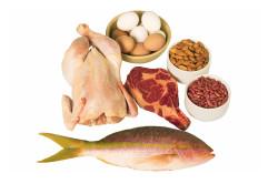 Белковая диета при ХЛС