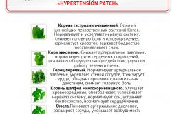 Состав пластыря Hypertension Patch