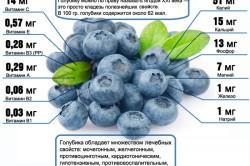 Витамины в голубике